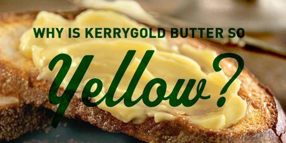 kerrygold-yellow
